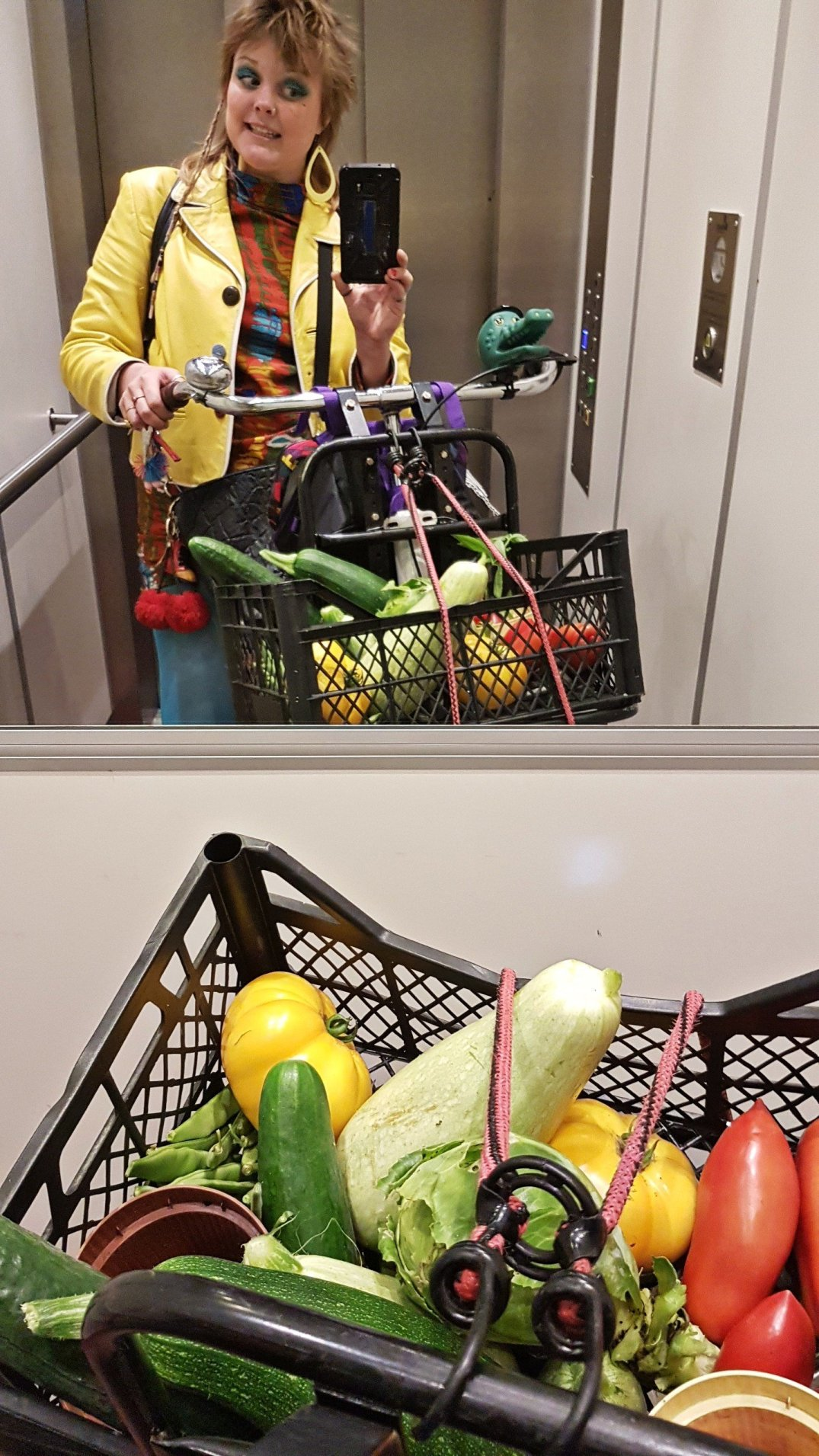 Vegetables in the elevator