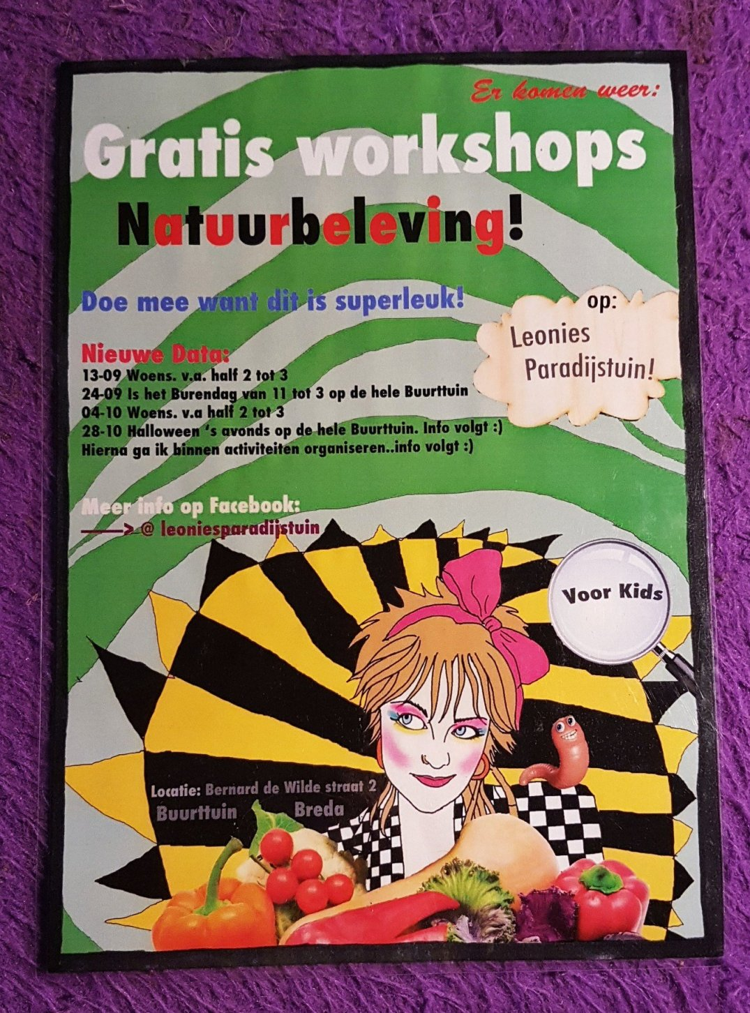 Gratis workshops