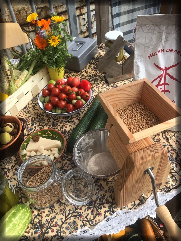 Oogst Harvest