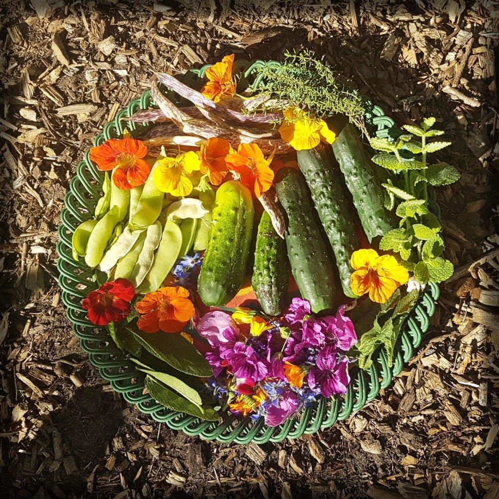 Mooie oogst
